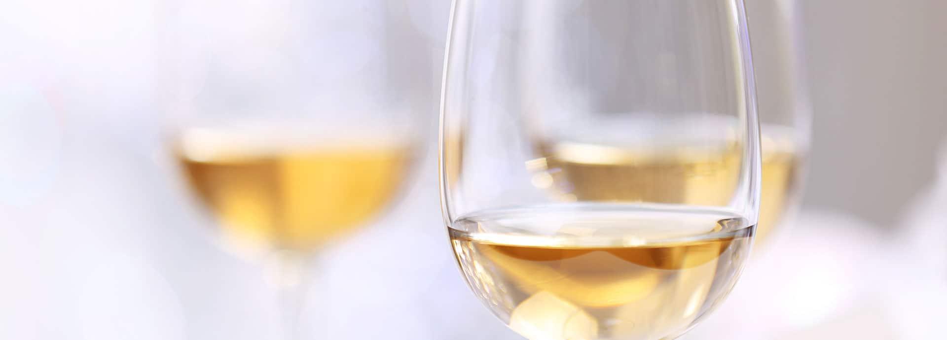 header vini bianchi