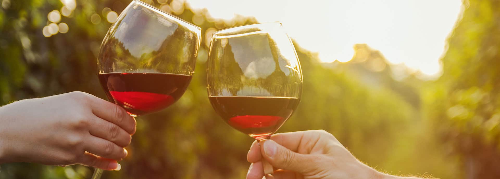 header vini rossi