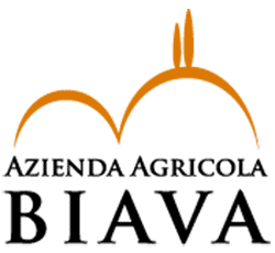 Logo Biava